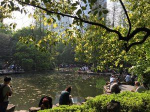 shanghai-peoples-park-300x225